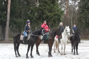 Прогулки на лошадях в конном клубе