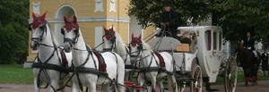 Праздничная карета