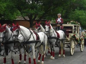 Конный свадебный экипаж