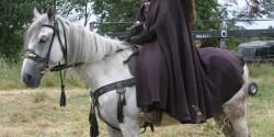 Всадник в костюме на лошаде