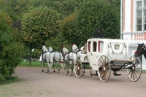 Свадебный конный кортеж