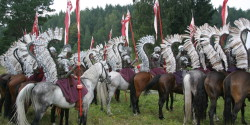 Лошади перед началом съемок