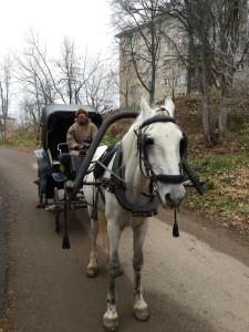 Лошадь запряженная в пролетку на съемках кино