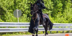 Лошадь на авто шоу Unlim 500+