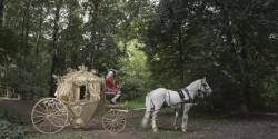 Пара лошадей на съемках ролика для сказки золушки