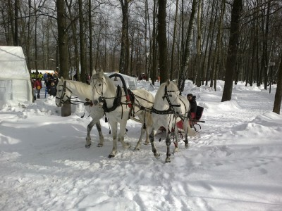 Тройка лошадей в красных санях