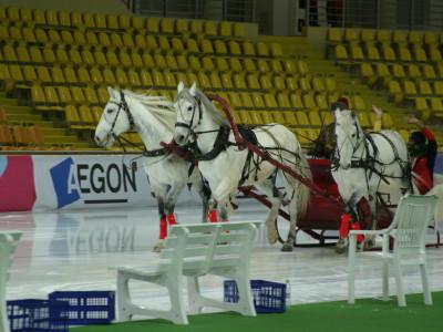 Тройка лошадей на льду